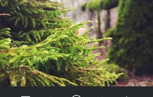 instagram-57-300x535